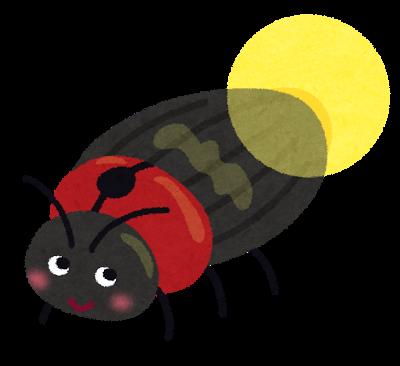 bug_hotaru