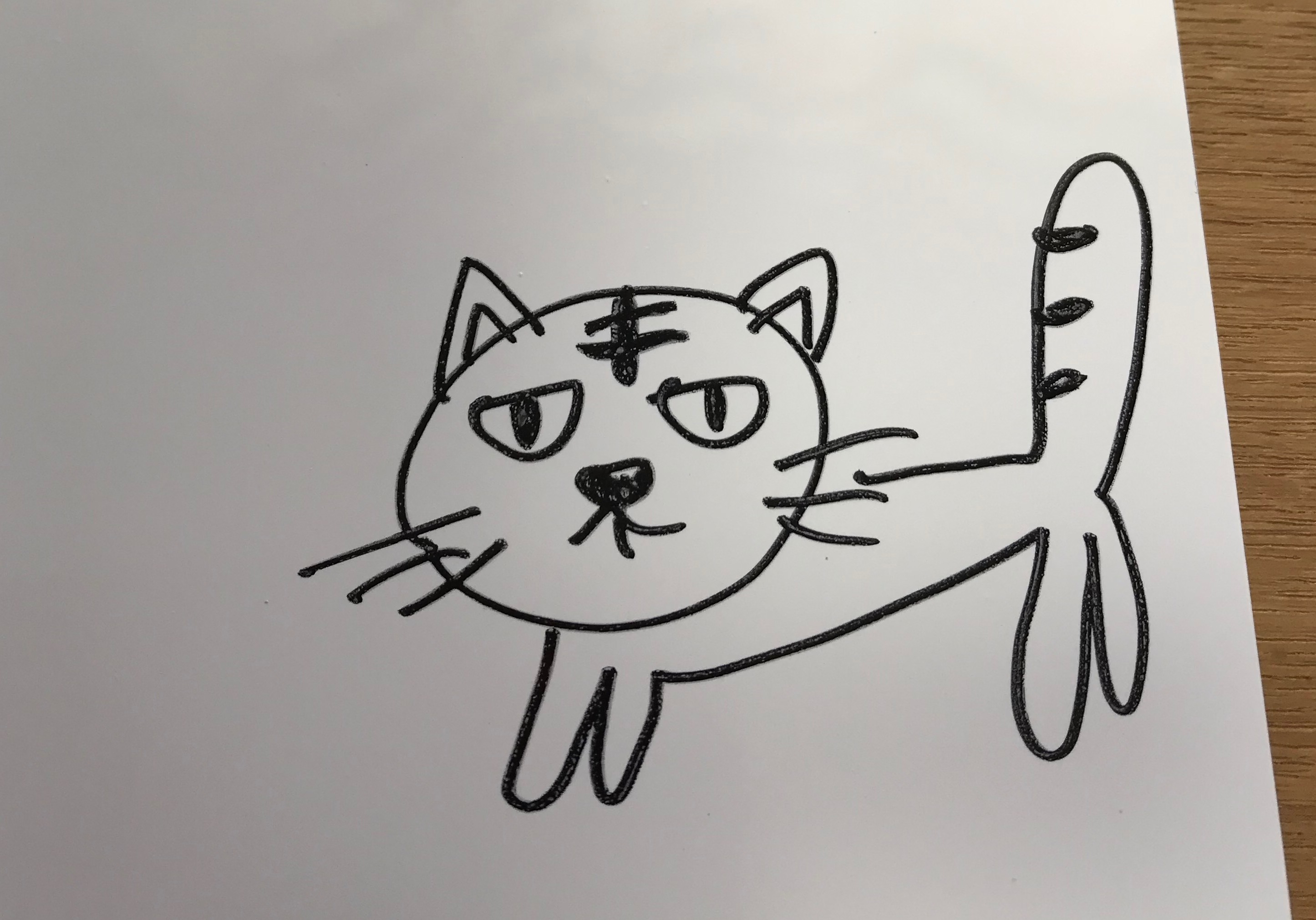 プラバン猫の絵の画像