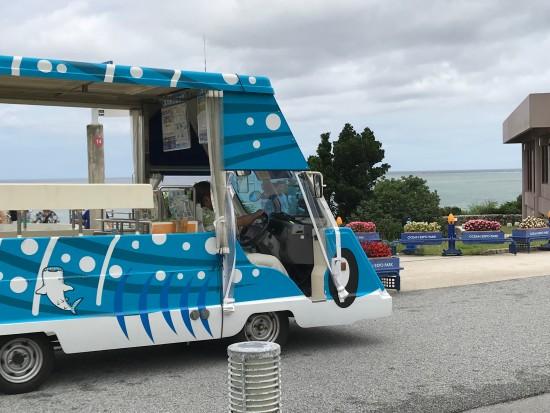 海洋公園バス